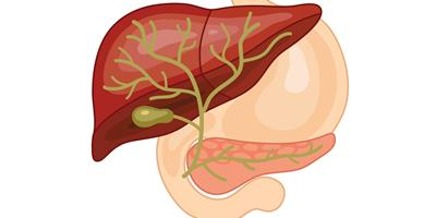 iStock-508011934 biliary for clinical topics
