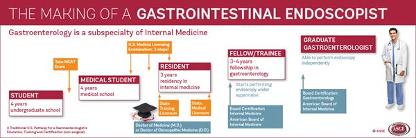 Making of GI Endoscopist - infographic